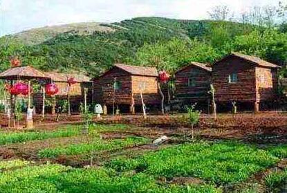 2020年在农村干什么挣钱