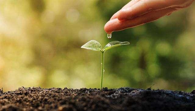 适合个人做的环保项目有哪些?