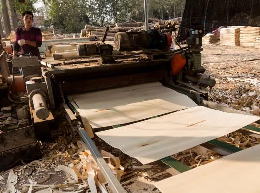 适合农村的小型加工厂:粗木加工厂怎么样?