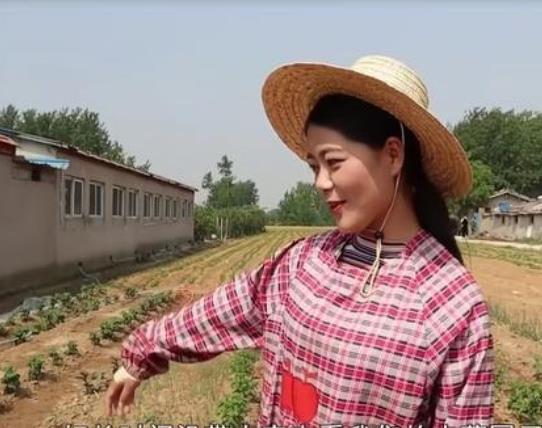 在农村创业,做什么比较赚钱?